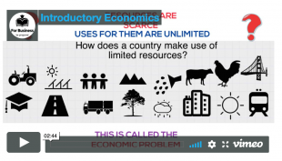 video introduction to economics